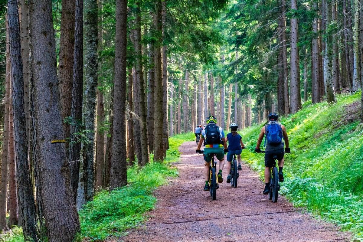 Wypoczynek aktywny na rowerze